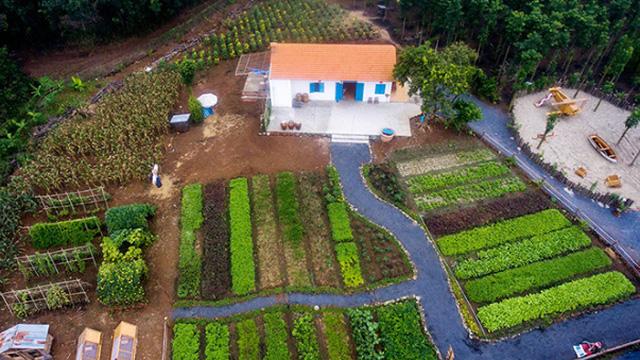 Về quê trốn dịch, nữ nhiếp ảnh mua hơn 1ha đất làm vườn, bất ngờ kiếm tiền tỷ từ sốt đất vùng ven