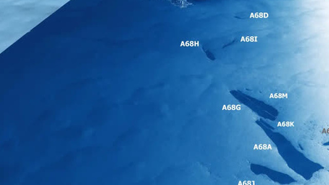 Tảng băng trôi lớn nhất từng được ghi nhận vỡ ra thành vô số mảnh, từng dài rộng cả trăm kilomet giờ chỉ còn... vài chục kilomet