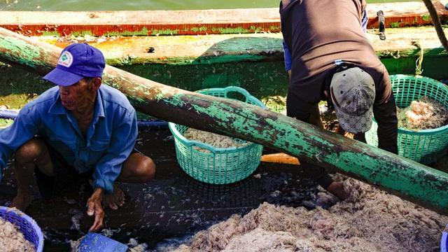 Ngư dân Bình Định kiếm tiền triệu chỉ sau vài giờ ra khơi