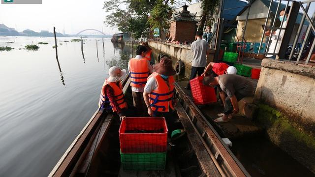 Hàng tấn cá cúng ông Táo được dân đi thuyền mang ra giữa sông Sài Gòn thả vì sợ bị chích điện