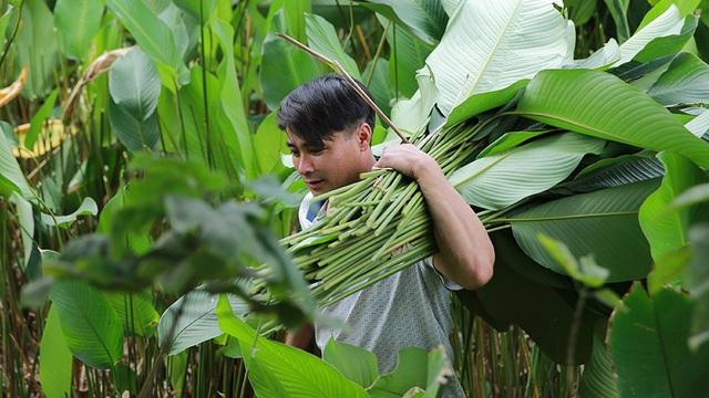Những ngày bận rộn nhất trong năm của làng lá dong Tràng Cát