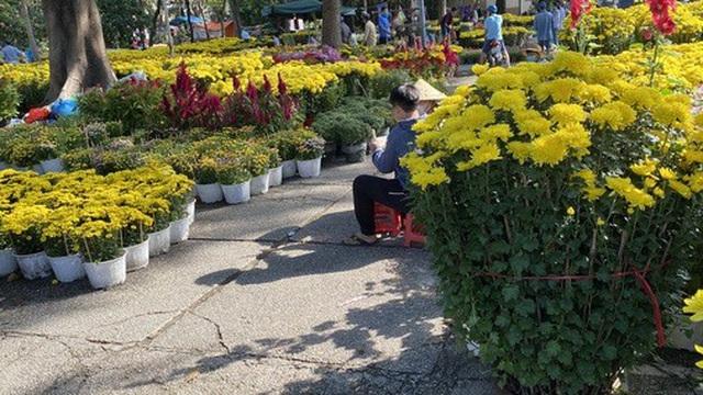 Người bán hoa Tết ở TP HCM muốn khóc sau trận mưa bất ngờ