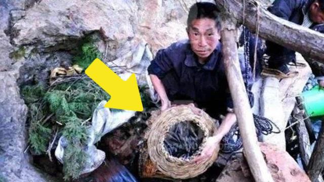 """Hang động bí ẩn """"nhả ra"""" hàng tấn cá một lần mỗi năm: Chuyên gia nói lên sự thật khiến người dân không dám ăn cá trong hang"""