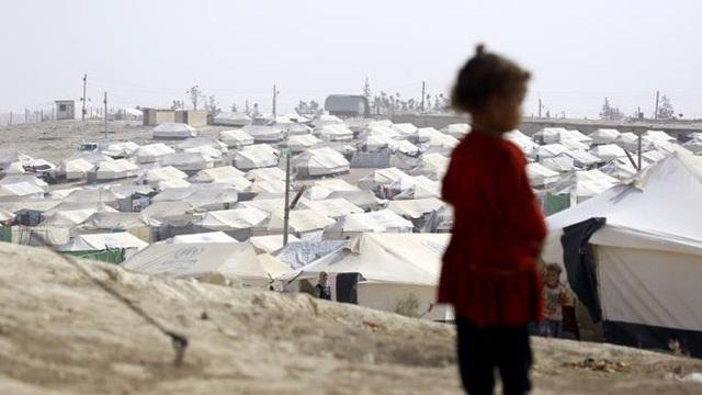 Nói dối là đi du lịch, bà mẹ Thụy Điển ôm con 2 tuổi đến hang ổ IS