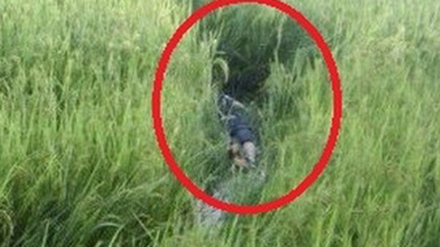 Người đàn ông dính bẫy chuột tử vong tại chỗ