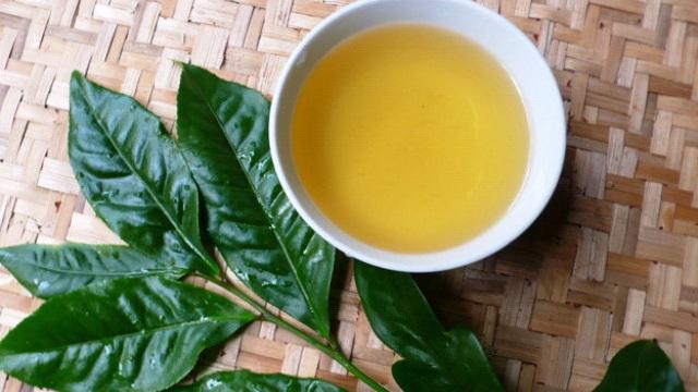 Các nhà khoa học Đức công bố: Trà xanh và 2 loại nước ép trái cây có thể chống lại Covid-19