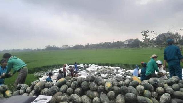 Người dân Hà Tĩnh thu gom giúp anh lái xe chở dưa lao xuống ruộng, mua giúp 15 tấn