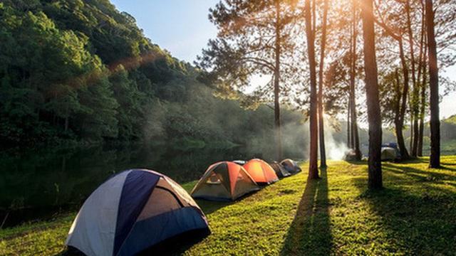 Đi camping hay du lịch nhất định phải thuộc lòng những kỹ năng sơ cứu này