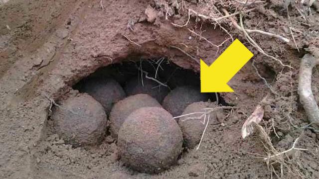 """Người nông dân đào được """"quả cầu"""" bí ẩn trong hang đất: Sau khi dùng xẻng đập vỡ nó, anh lập tức hoảng sợ"""