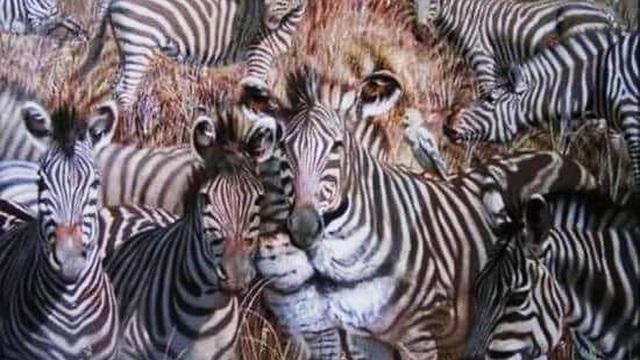 Con vật nhìn thấy đầu tiên tiết lộ bạn là người kiêu hãnh, hài hước hay có khiếu lãnh đạo!