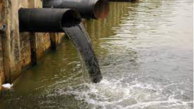 Công ty thủy sản ở Cà Mau bị phạt hơn 600 triệu đồng do vi phạm xả nước thải ra môi trường