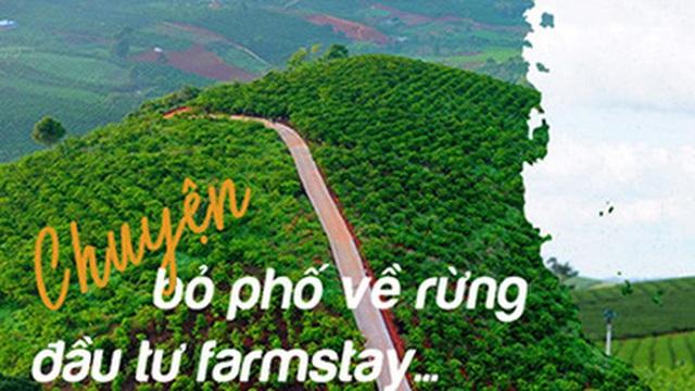 """Câu chuyện """"bỏ phố về rừng"""" đầu tư Farmstay của một đại gia Tp.HCM sở hữu 50 căn nhà vườn"""