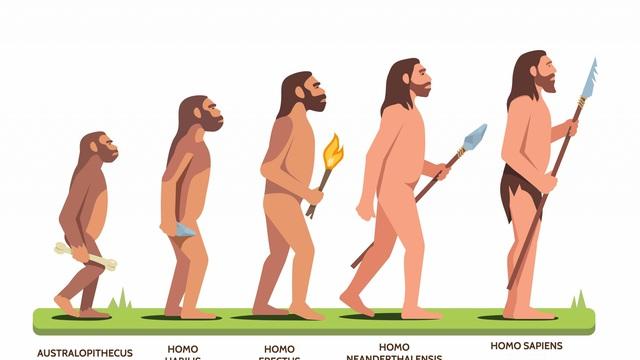 Khí hậu thay đổi kích thước con người