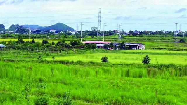 """Tích tụ đất đai cho sản xuất hàng hóa: Chuyện buồn dự án """"siêu nông"""""""