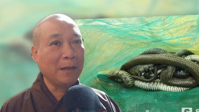 Hòa thượng Thích Bảo Nghiêm nói về việc nhà chùa thả rắn ra đường