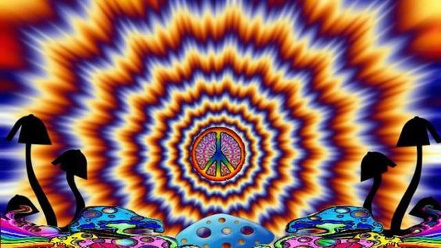 Bí ẩn loài nấm ma thuật  không chỉ gây ảo giác mà còn thay đổi tính cách con người... vĩnh viễn!