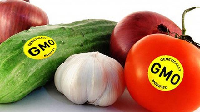 Thực phẩm biến đổi gen - Nên hay không nên ăn?