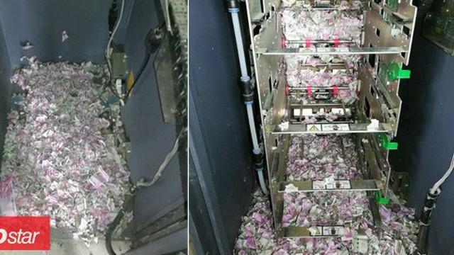 Chuột lẻn vào máy ATM, cắn nát gần 600 triệu đồng