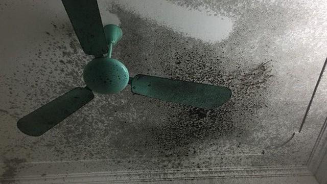 Đang nấu chè đỗ đen thì nồi áp suất phát nổ, mọi thứ bắn lên tận trần nhà