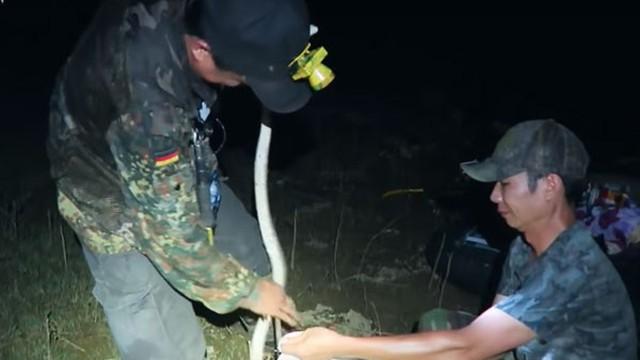 Săn rắn mưu sinh đầu mùa lũ ở thượng nguồn sông Hậu