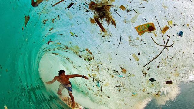 Thảm hoạ môi trường từ chiếc ống hút nhựa và những bao bì vị vứt đi