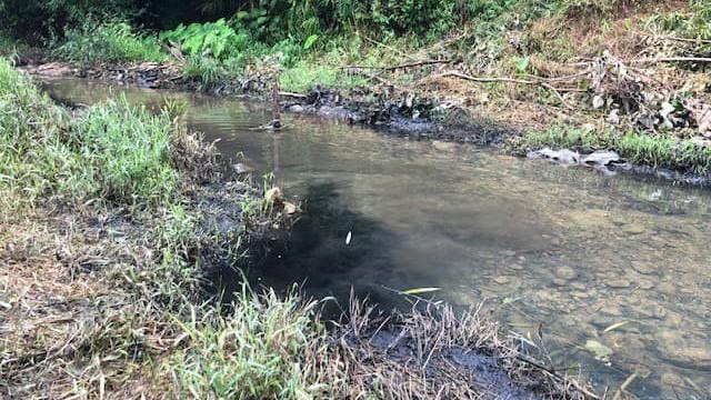 Lời khai ban đầu của 2 đối tượng trong vụ đổ dầu thải gây ô nhiễm nguồn nước sông Đà