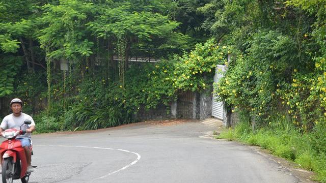 Công bố kết luận Thanh tra tại bán đảo Sơn Trà, đề nghị công an điều tra nhiều nội dung