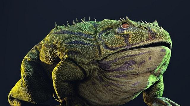 Ếch quỷ: Sinh vật khổng lồ 'đến từ địa ngục' sở hữu lực cắn khủng khiếp cỡ nào?