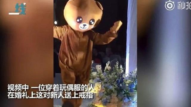 Xuất hiện 'gấu nâu' nhảy múa trong đám cưới, khi biết danh tính người mặc trang phục ai cũng xúc động