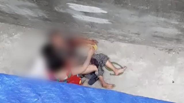 Chó Malinois cắn xé bà cụ ở Hà Nội chỉ buông tha nạn nhân khi bị đập gậy vào đầu
