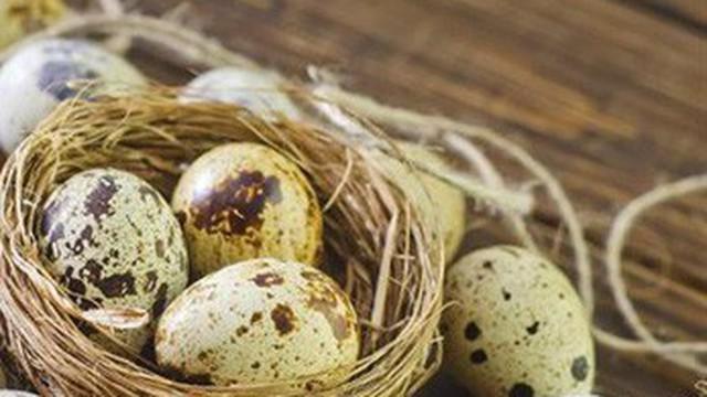 """Người Nhật Bản rất """"chuộng"""" ăn trứng chim cút vì 10 lợi ích nhãn tiền này"""