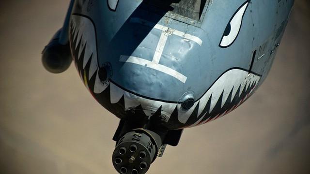 """Hãy quên F-35 đi: """"Lợn lòi"""" A-10 sẽ tiếp tục """"thống trị chiến trường"""" với đôi cánh mới?"""