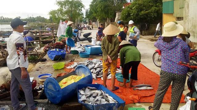 Xuất hiện thêm hàng tấn cá chết nổi trắng sông ở Hà Tĩnh