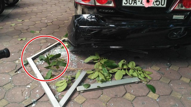 Cửa kính ở chung cư bất ngờ rơi xuống sân, vỡ tan tành khiến nhiều người kinh hãi