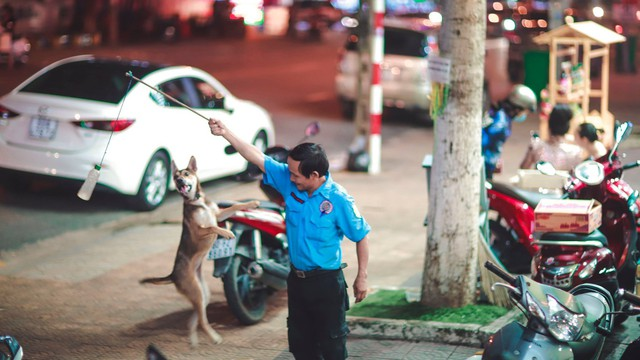Bác bảo vệ và hành động đùa giỡn cùng chú chó bên vỉa hè, câu chuyện đằng sau cảm động hơn