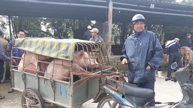 """""""Đệ nhất chợ lợn"""" ở Hà Nam"""