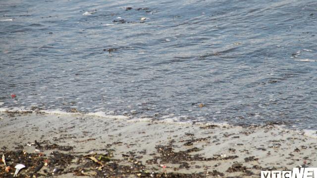 Cận cảnh nước đen ngòm, bốc mùi hôi thối kéo dài 4km bờ biển Đà Nẵng