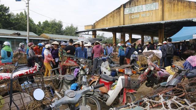 Chợ heo lớn nhất miền Trung ứng phó dịch tả lợn châu Phi như thế nào?