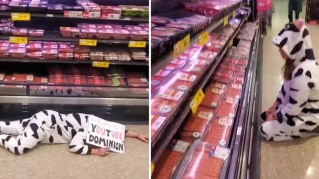 Nhằm kêu gọi ăn chay, cô gái hóa thân thành bò sữa than khóc thảm thiết tại quầy bán thịt khiến MXH hoang mang