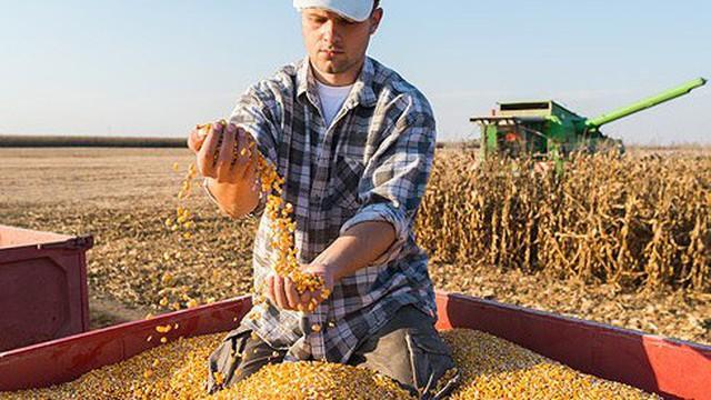 """Từ câu chuyện nông sản đến """"cuộc chiến"""" của Mỹ đẩy Trung Quốc ra khỏi chuỗi giá trị toàn cầu"""