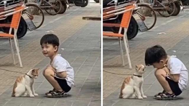 Con trai suốt ngày đi học về muộn, mẹ đi theo tìm hiểu và phát hiện ra bí mật rất dễ thương này