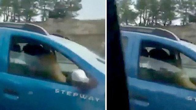 """Tìm cảm giác lạ, cặp đôi mạo hiểm """"mây mưa"""" khi đang lái xe khiến người đi đường hoảng hốt"""