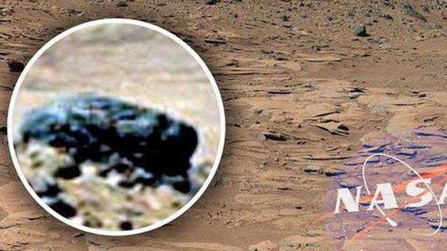 Cựu chuyên gia NASA khẳng định: Chúng ta đã tìm được bằng chứng về sự sống trên sao Hỏa
