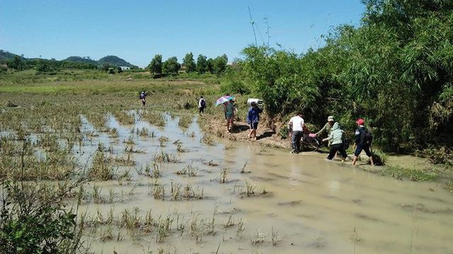 Đắk Lắk ngập nặng sau bão, học sinh lội ruộng đến trường
