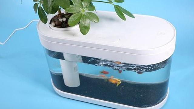 Xiaomi ra mắt bể cá di động chạy điện và không cần thay nước thường xuyên, giá chỉ khoảng 1 triệu đồng