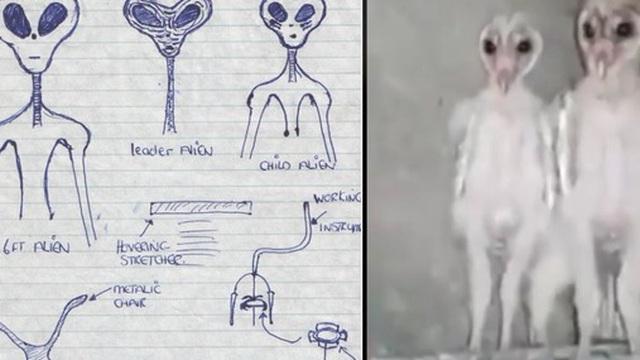 """Dân mạng đang hoảng sợ vì đoạn video về """"người ngoài hành tinh"""", nhưng hóa ra là một sinh vật quen thuộc đến bất ngờ"""