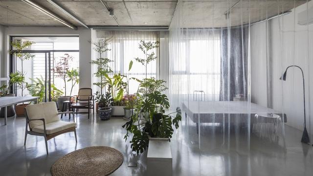 Tp.HCM: Mãn nhãn với căn hộ ngập tràn ánh sáng tự nhiên sau khi được cải tạo