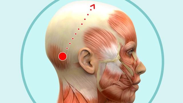 Bài mát xa đầu giúp trẻ hóa toàn bộ khuôn mặt, lưu thông khí huyết và ngăn ngừa bệnh tật