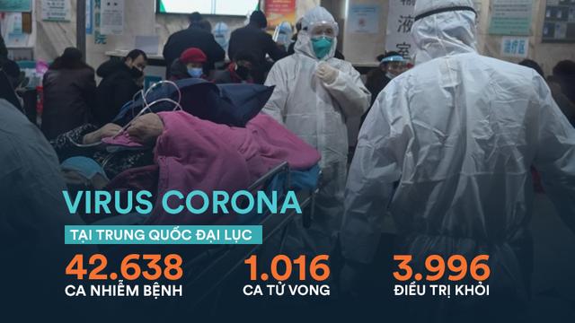 Tổng Giám đốc WHO: Vaccine ngừa virus corona có thể sẵn sàng đưa vào sử dụng sau 18 tháng nữa
