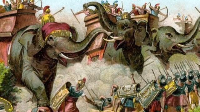 Sức mạnh khủng khiếp của chó ngao Nam Phi: Đột phá vòng vây, giải cứu Alexander Đại đế